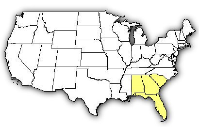 Venombytecom Venomous Snakes Florida Cottonmouth - Us map with florida highlighted