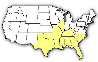 Map of US states the Southern Copperhead is found in.