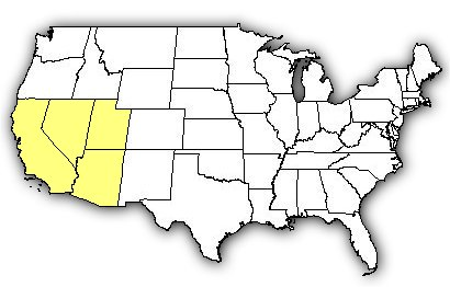 Map of US states the Southwestern Speckled Rattlesnake is found in.