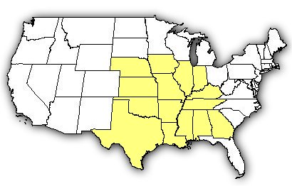 Map of US states the Brown Recluse is found in.