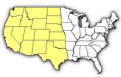 map of us states the western black widow is found in